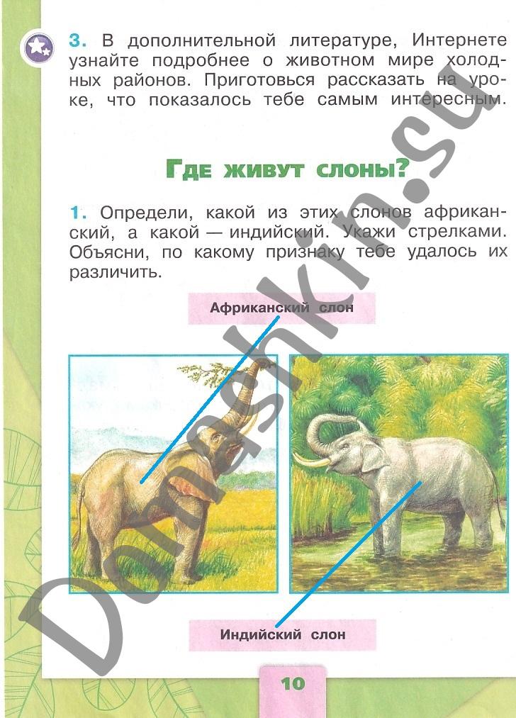 ГДЗ Окружающий мир 1 класс рабочая тетрадь Плешаков 2 часть страница 10