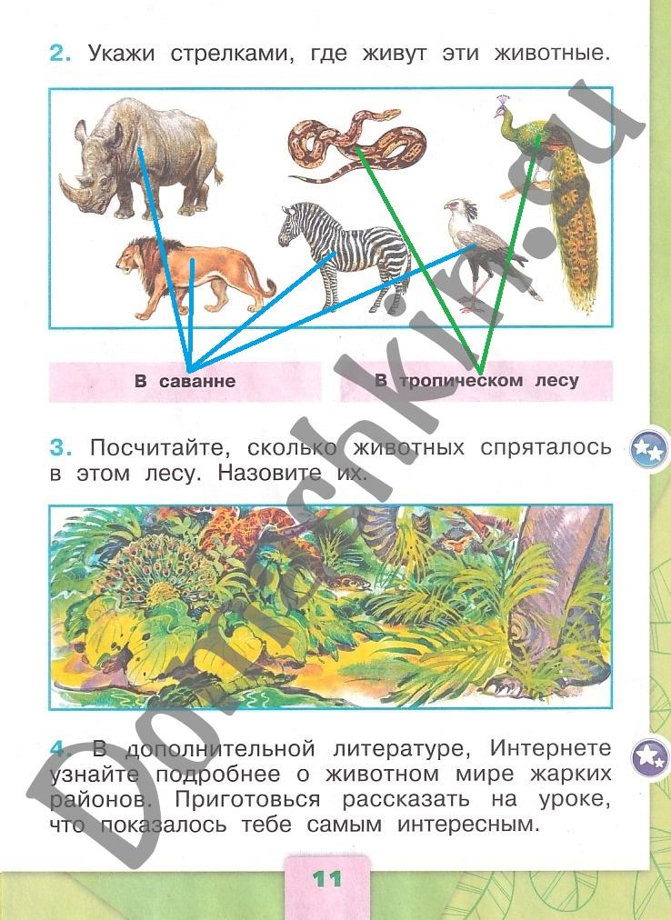 ГДЗ Окружающий мир 1 класс рабочая тетрадь Плешаков 2 часть страница 11
