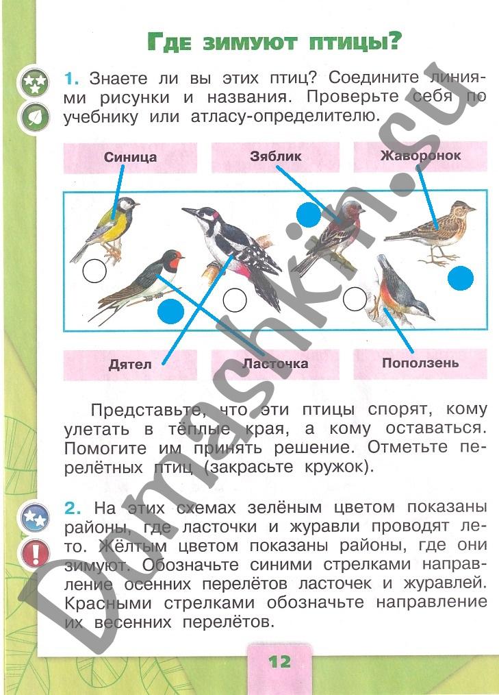 ГДЗ Окружающий мир 1 класс рабочая тетрадь Плешаков 2 часть страница 12