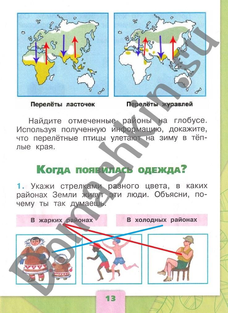ГДЗ Окружающий мир 1 класс рабочая тетрадь Плешаков 2 часть страница 13