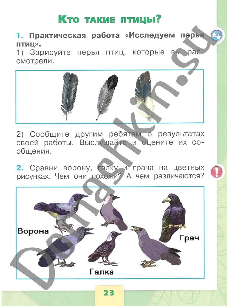 ГДЗ Окружающий мир 1 класс рабочая тетрадь Плешаков 1 часть страница 23
