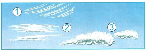 ГДЗ Окружающий мир 1 класс рабочая тетрадь Плешаков 1 часть страница 8 задание 1