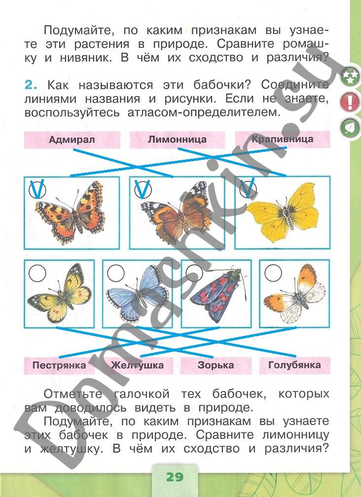 ГДЗ Окружающий мир 1 класс рабочая тетрадь Плешаков 2 часть страница 29
