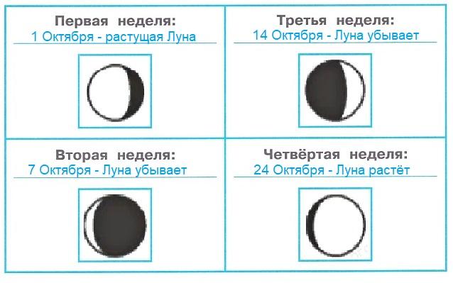 ГДЗ Окружающий мир 1 класс научный дневник Плешаков страница 3 задание 2