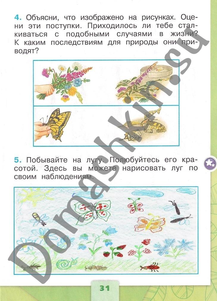 ГДЗ Окружающий мир 1 класс рабочая тетрадь Плешаков 2 часть страница 31