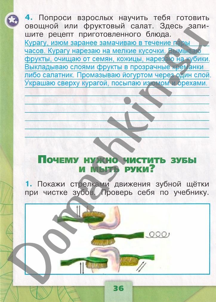 ГДЗ Окружающий мир 1 класс рабочая тетрадь Плешаков 2 часть страница 36