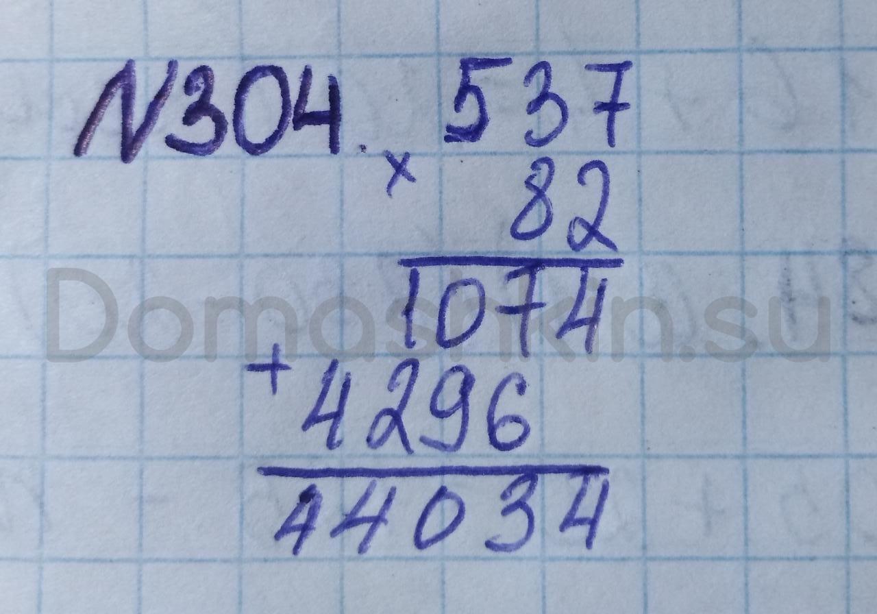 Математика 5 класс учебник Никольский номер 304 решение