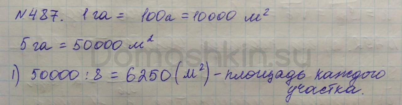 Математика 5 класс учебник Никольский номер 487 решение
