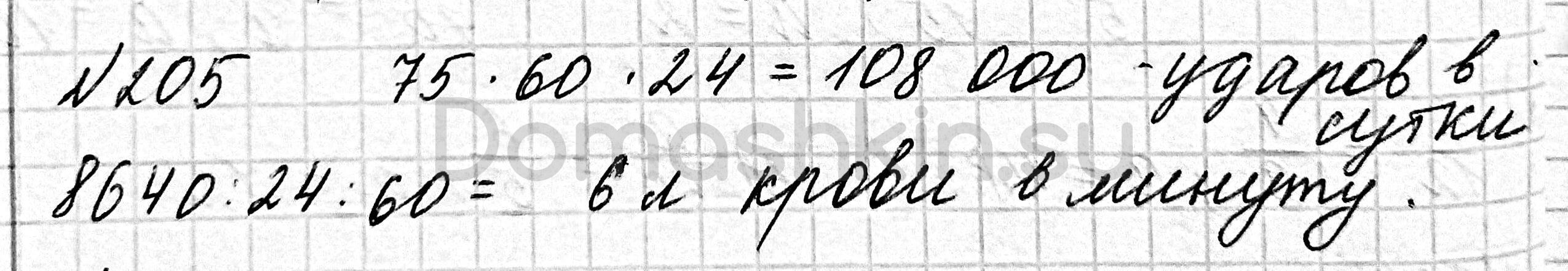 Математика 6 класс учебник Мерзляк номер 205 решение
